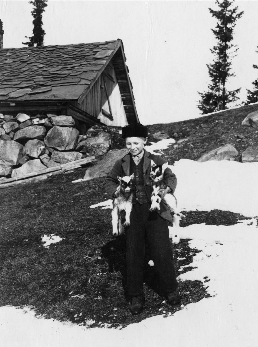 Gutt med to geiter under armene utendørs, ukjent sted. Serie tatt av Robert Collett (1842-1913), amatørfotograf og professor i zoologi.