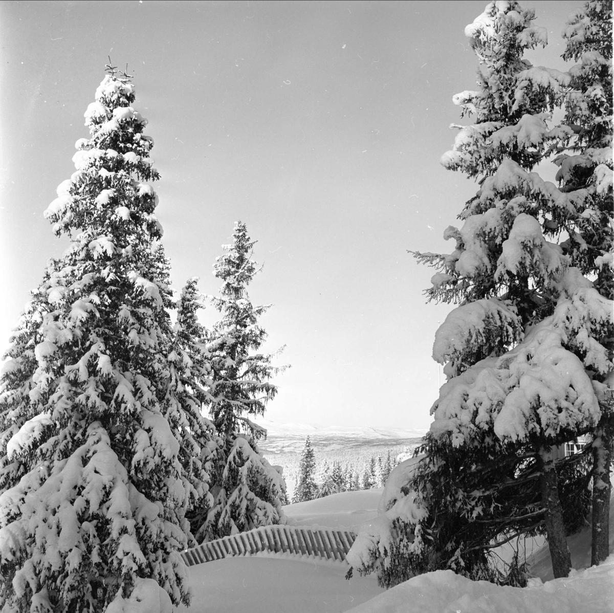 Golå Høyfjellshotell, vinterstemning,  turister i fjellet, Sør-Fron 23.08.1961
