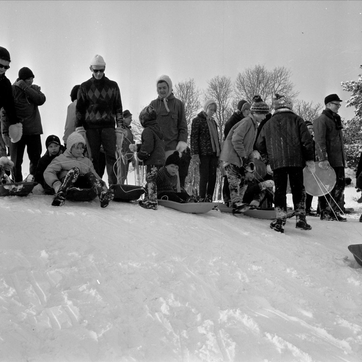 Pulkaåkare i Torslundabacken, Tierp, Uppland 1967