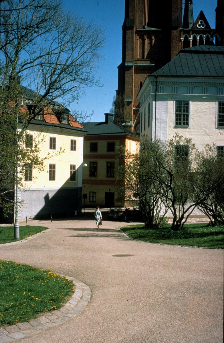 Historicum och Gustavianum i Universitetsparken, Uppsala 1987