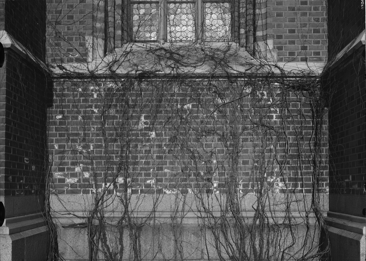 Skador i murverk, Uppsala domkyrka, Uppsala år 1938