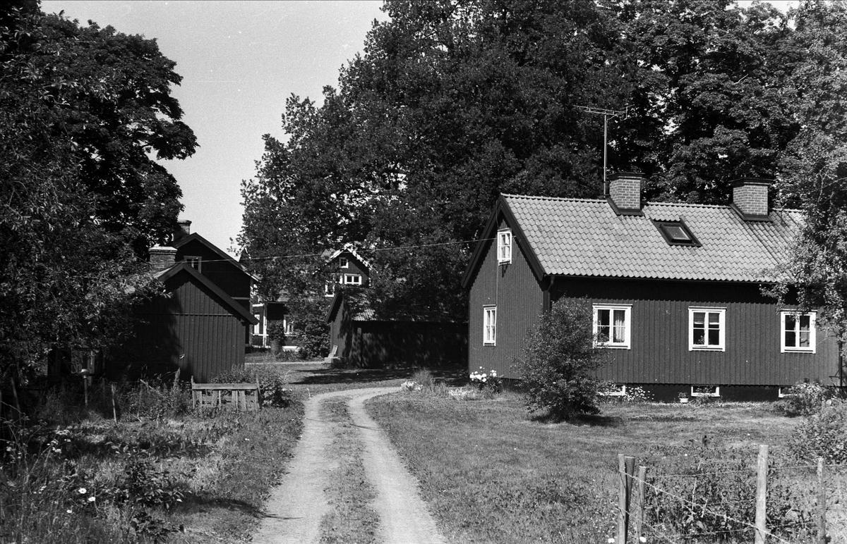 Bostadshus, hönshus och förråd, Lund 3:1, Björklinge socken, Uppland 1976