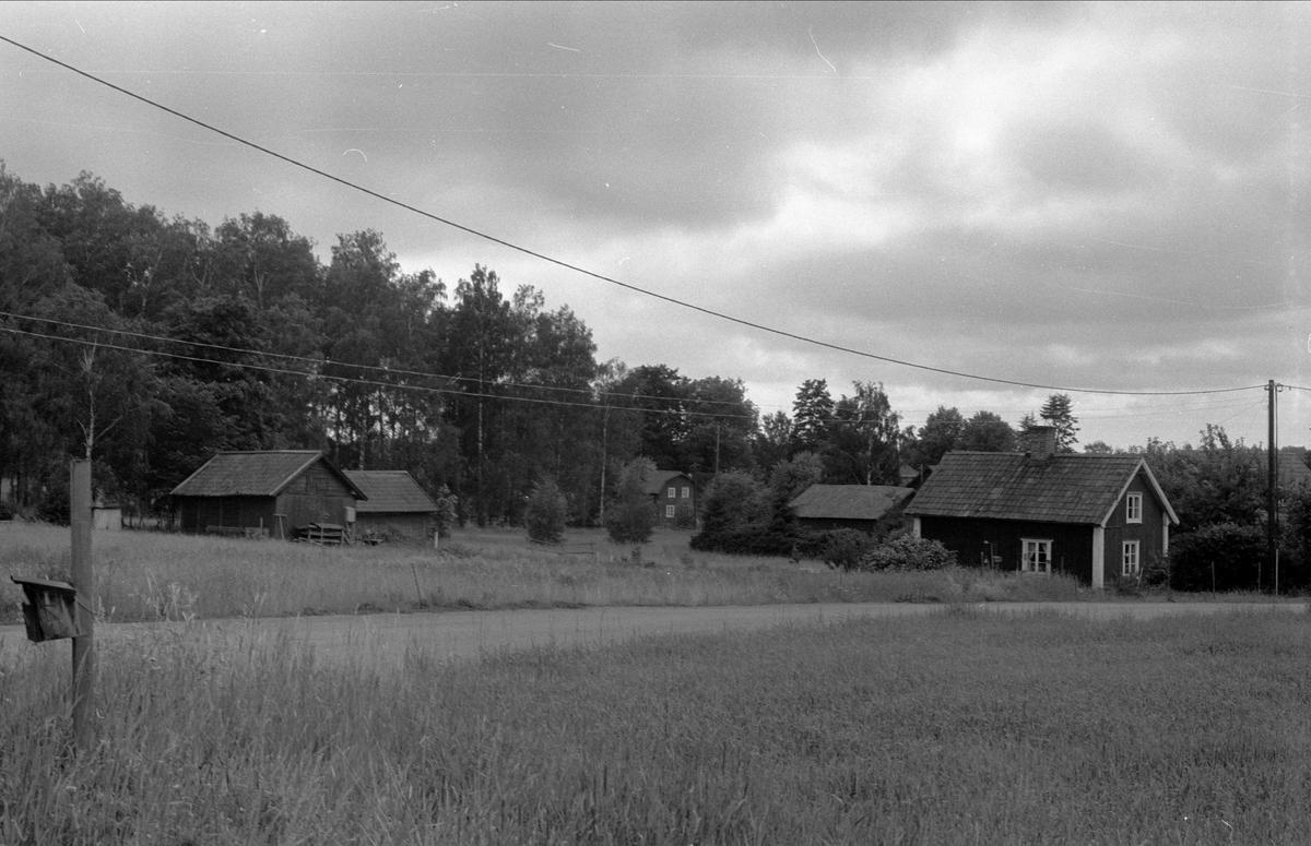 Vy över Drälinge 1:8, 1:9 och 1:11, Björklinge socken, Uppland 1976