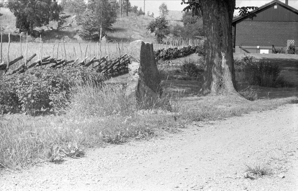 Runsten, Högsta 1:6, Bälinge socken, Uppland 1976