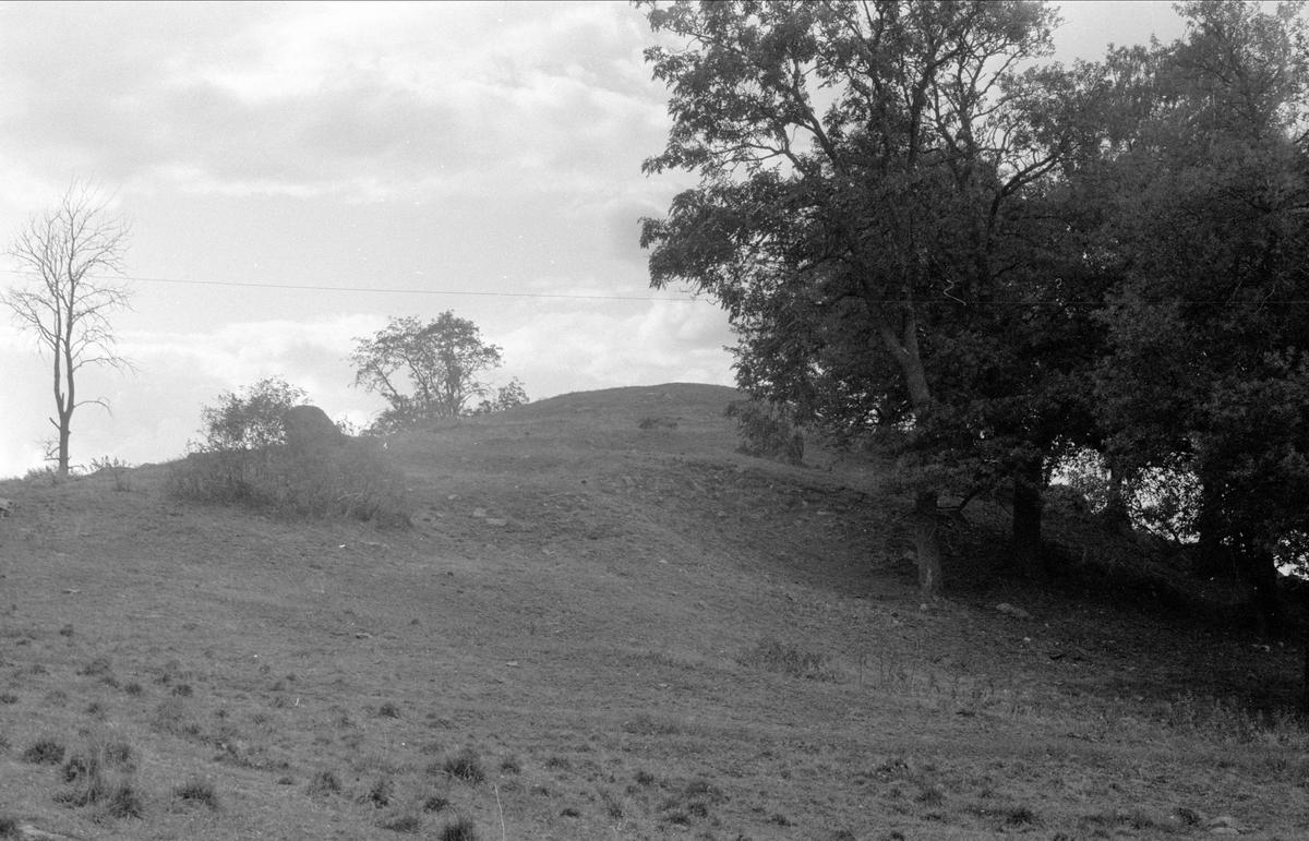 Gravfält vid Lytta 1:4 och 1:6, Lytta, Bälinge socken Uppland 1976