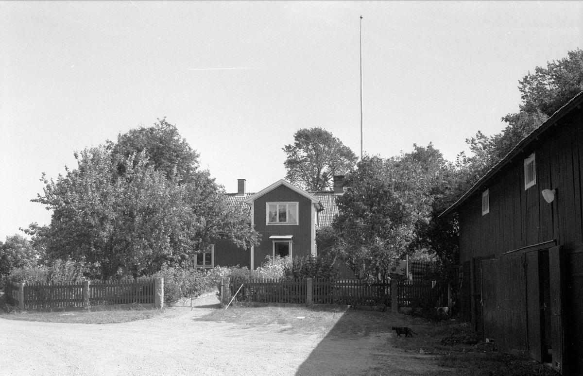 Bostadshus, Alsta 2:3, Börje socken, Uppland 1983