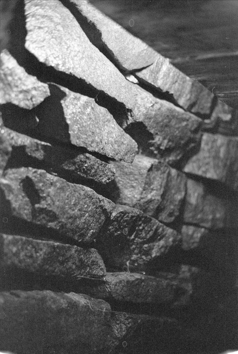 Källare, Fullerö 16:4, Gamla Uppsala socken, Uppland 1978