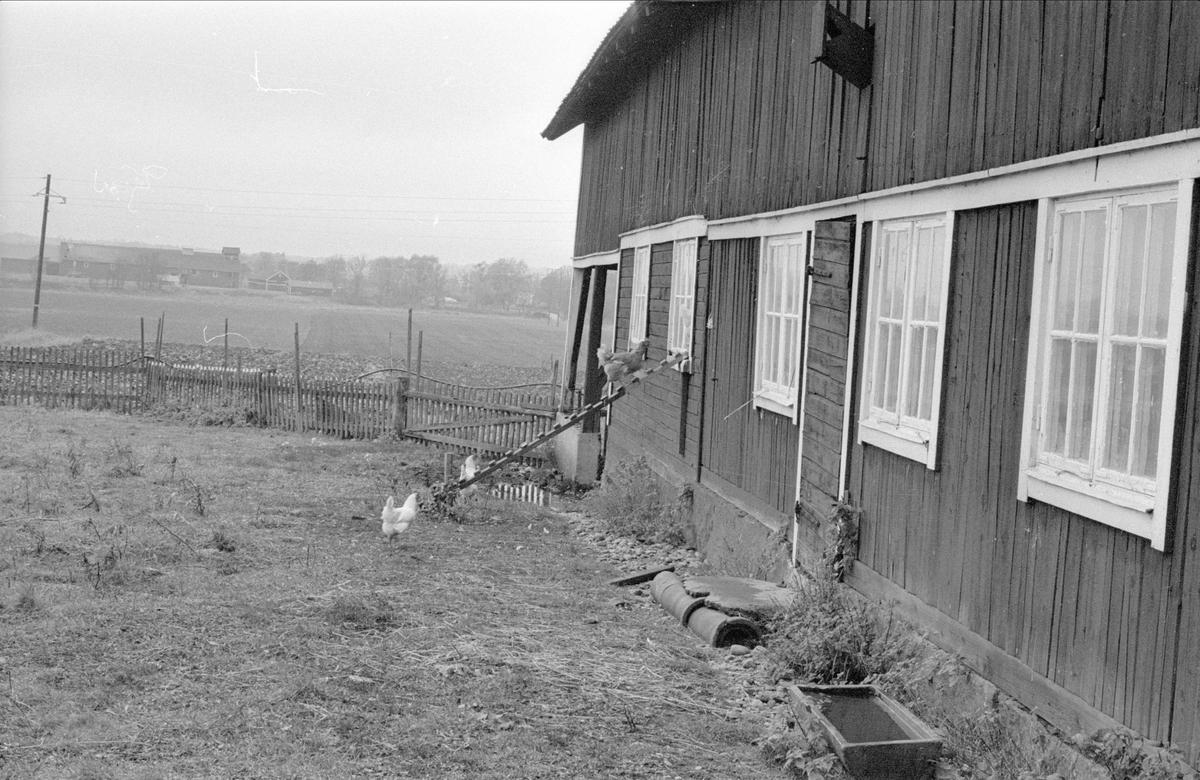 Ladugård/lada, Söderbyn, Fullerö 21:24, Gamla Uppsala socken, Uppland 1978