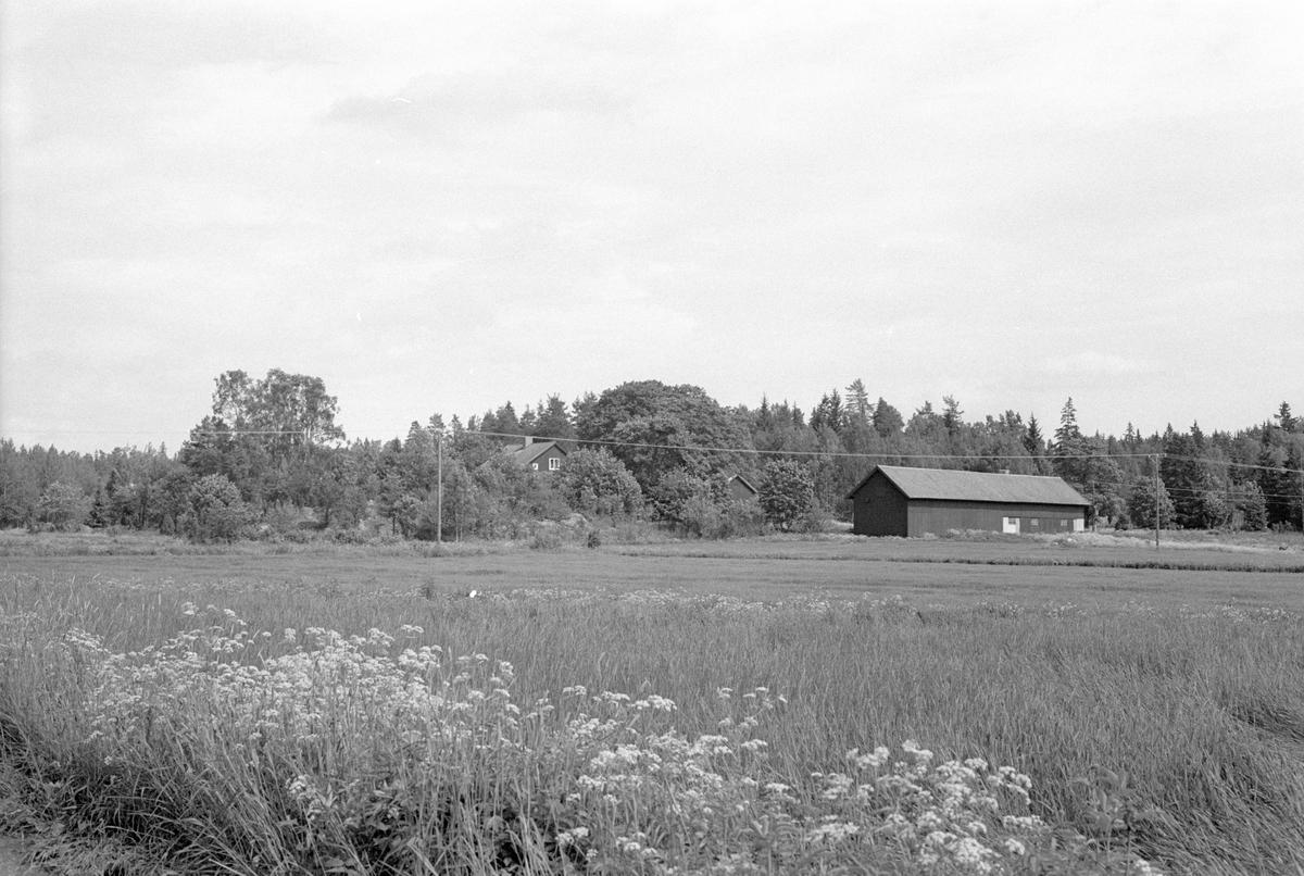 Vy över Norränge, Burvik, Knutby socken, Uppland 1987