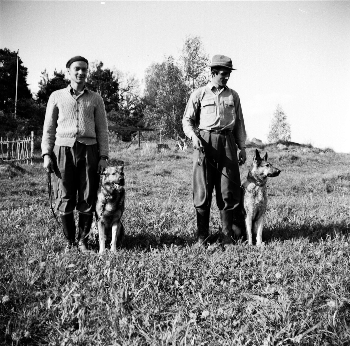 Svenska Brukshundklubbens Uppsalaavdelning, Uppsala maj 1953