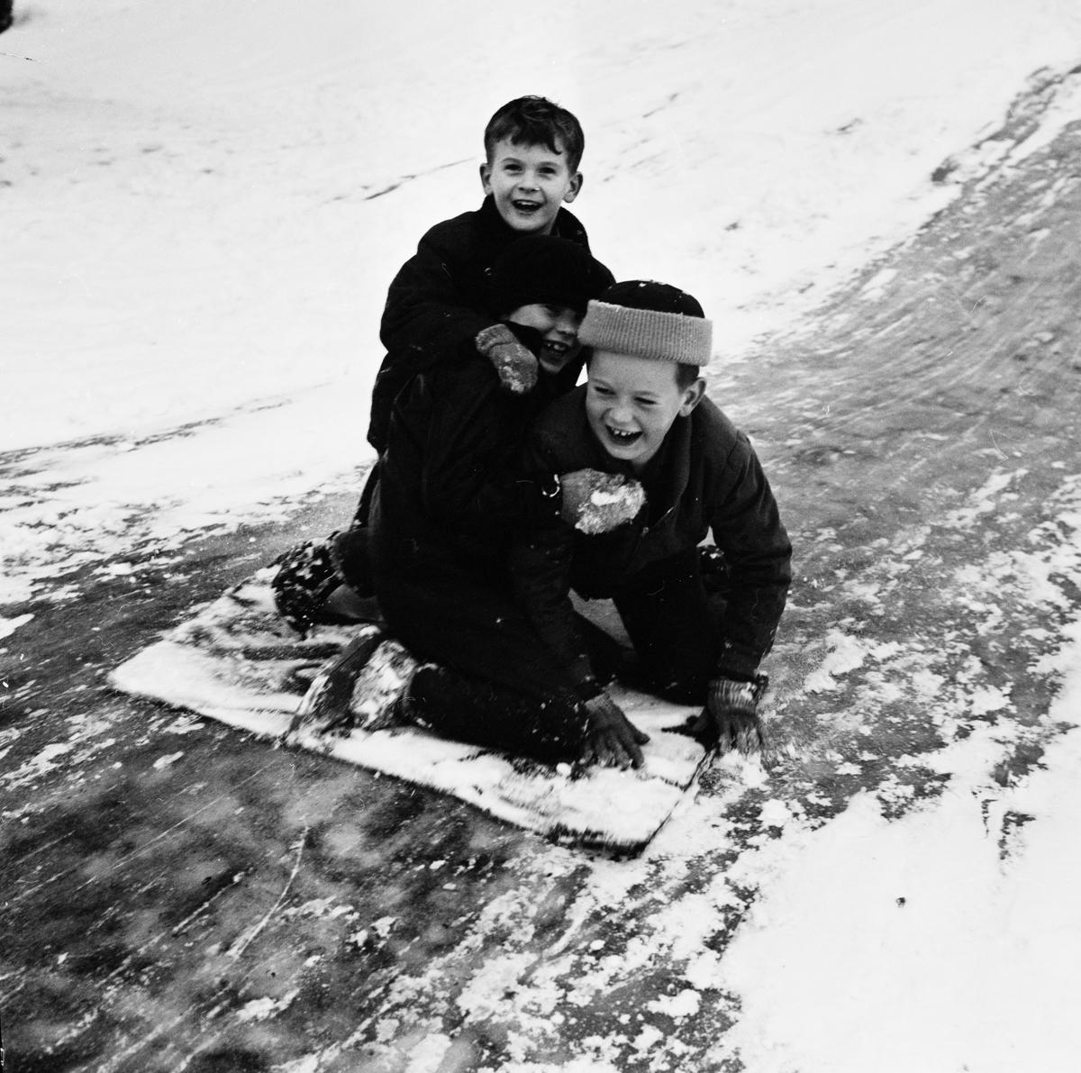 Barn åker kana, Uppsala januari 1962