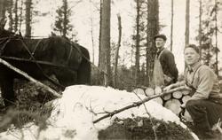 Skogsarbeid på Valand i Konsmo. Audnedal.