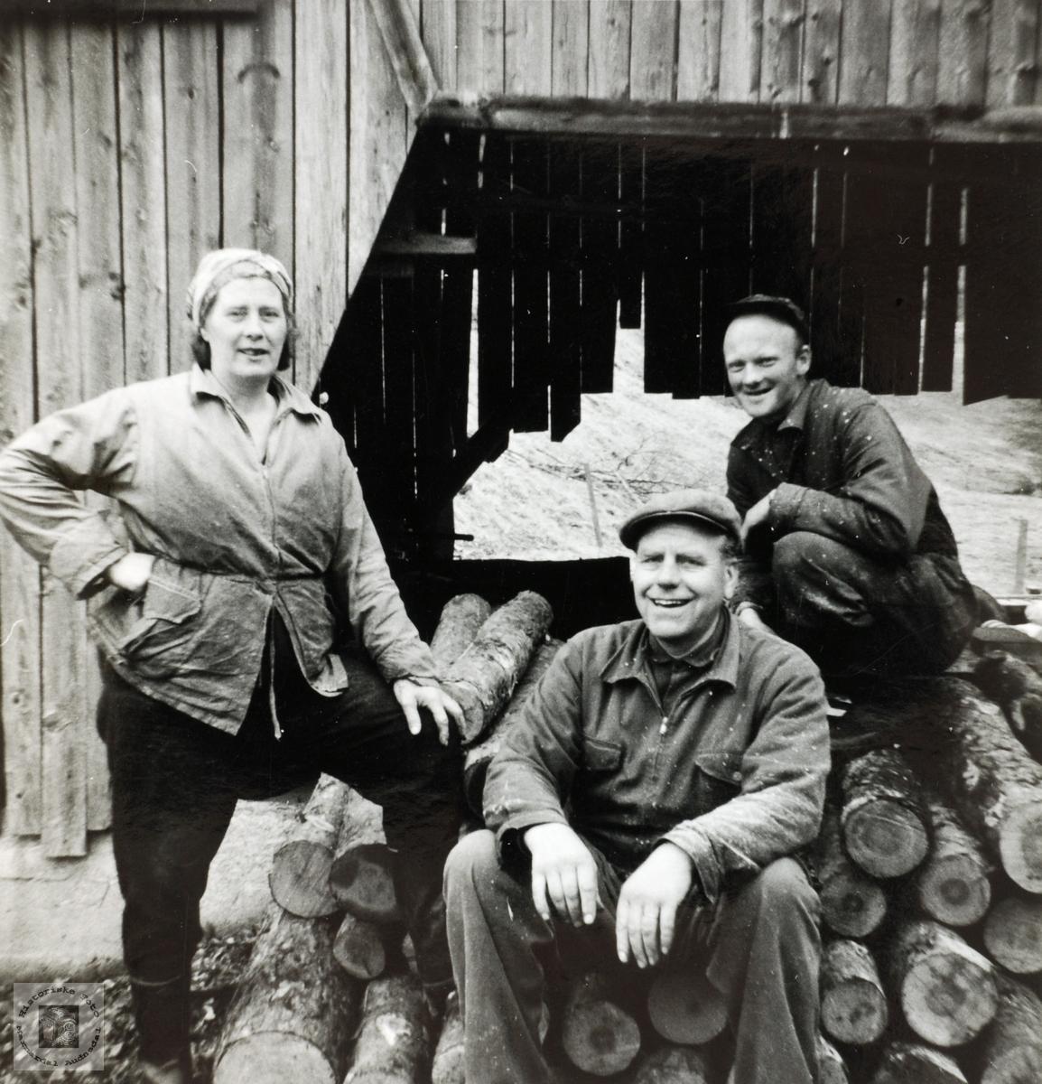 Stavsjau på Håland i Grindheim Audnedal.