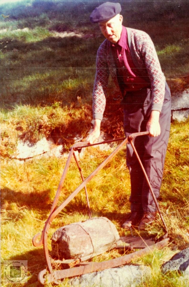 Ingvald Hårtveit bruker torvskjeraren på garden sin. Grindheim.