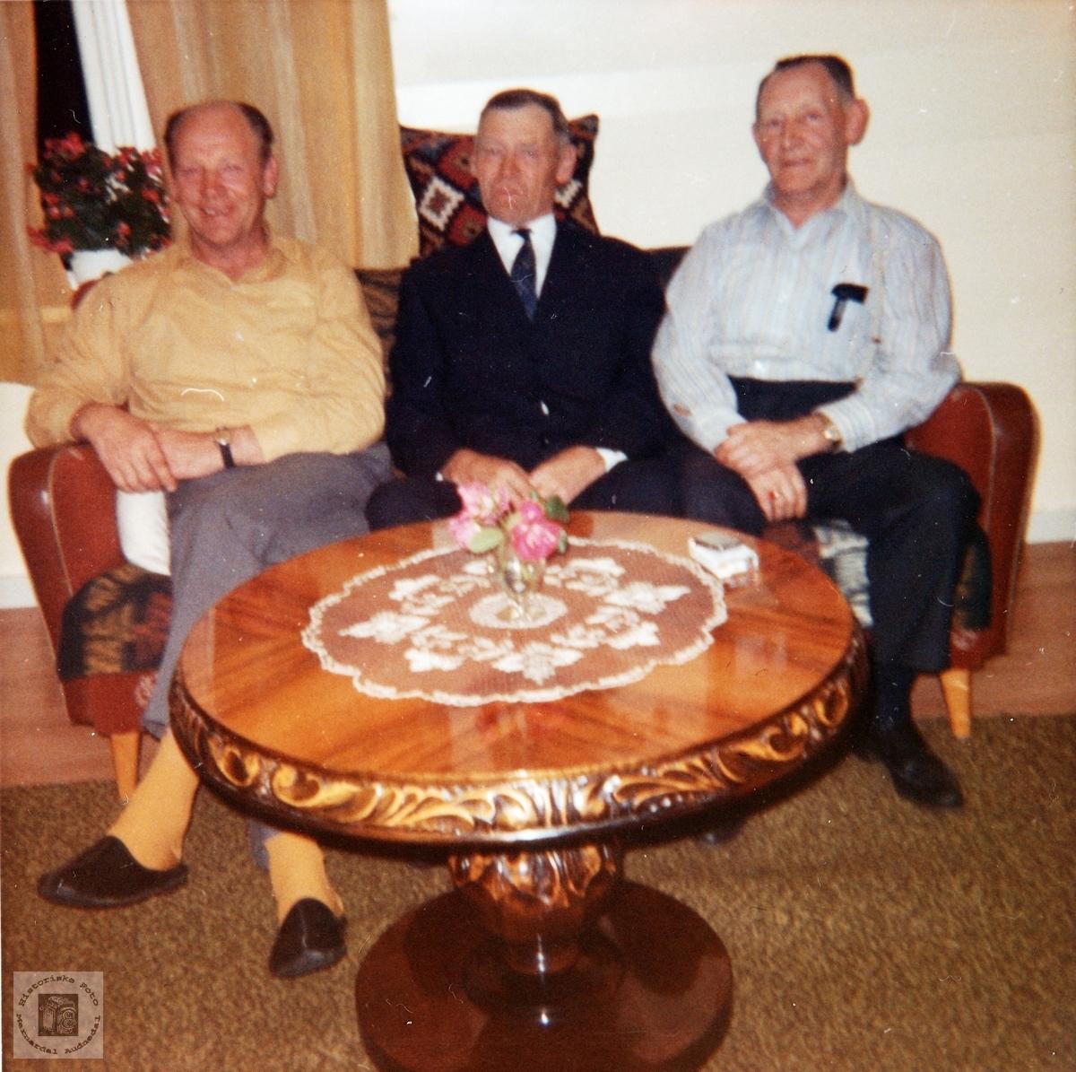 Portrett av brødrene Helle. Audnedal.