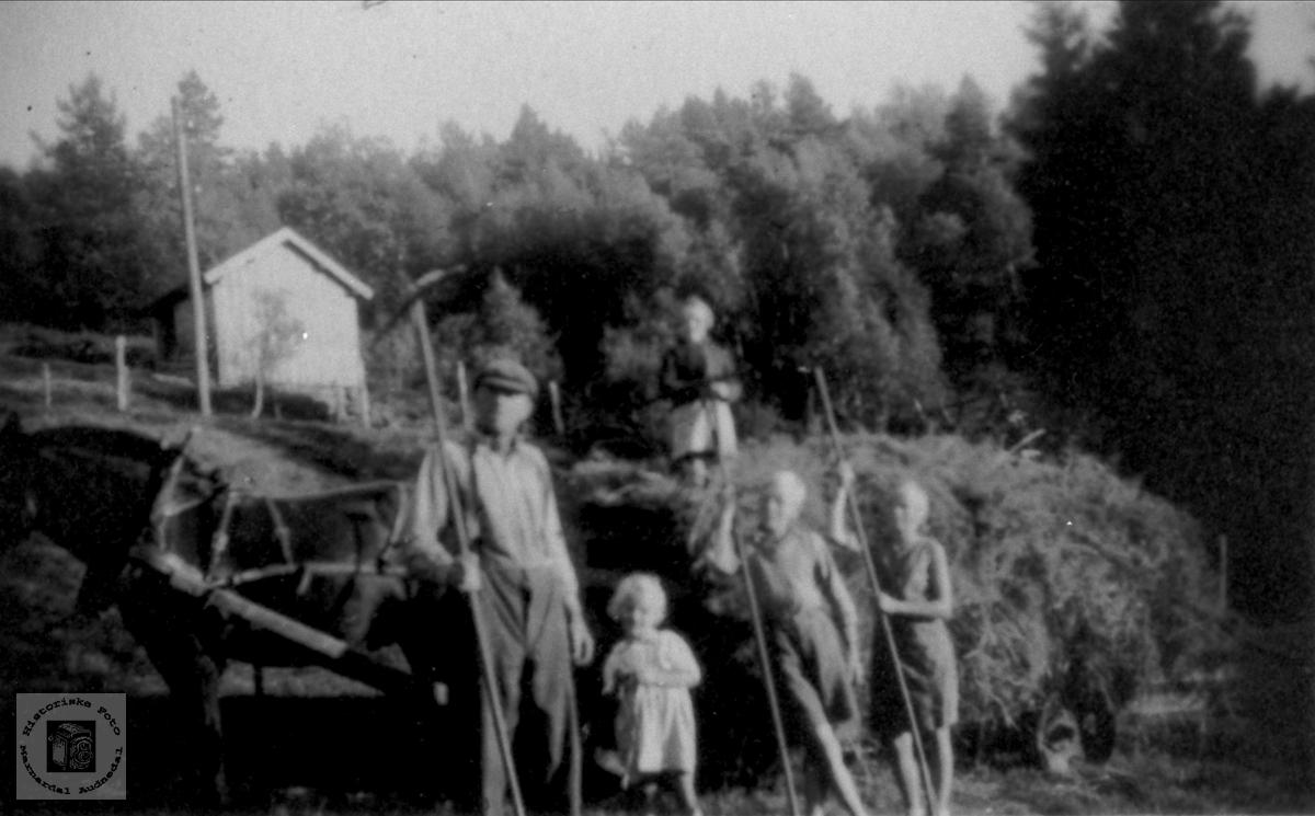 Haustonn på Roland i Bjelland.