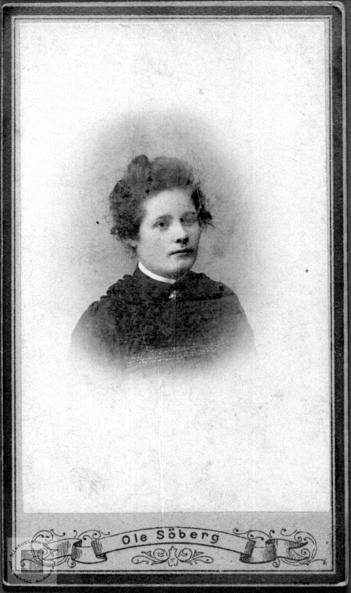 Portrett av ukjent dame.