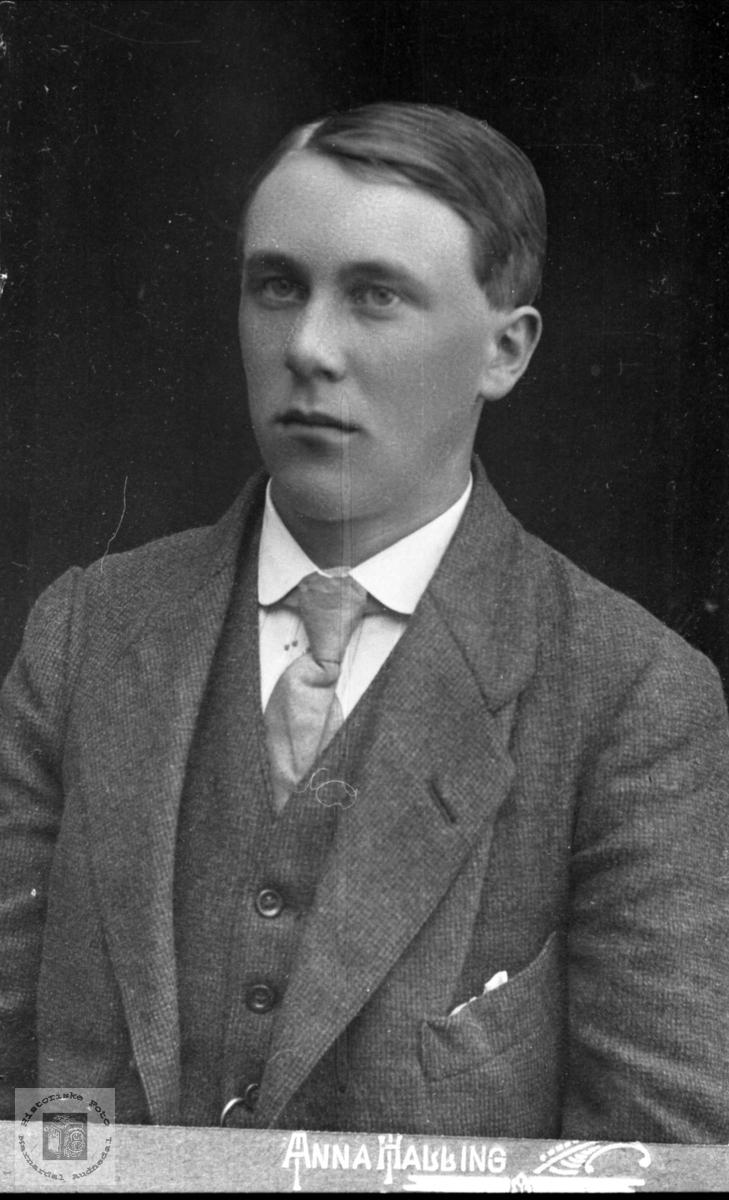 Portrett av Ludvig Listad, Øyslebø.