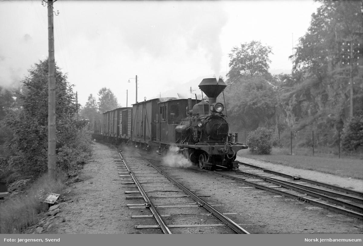 Damplokomotiv nr. 2 med godstog 5661 kjører inn på Hægeland stasjon