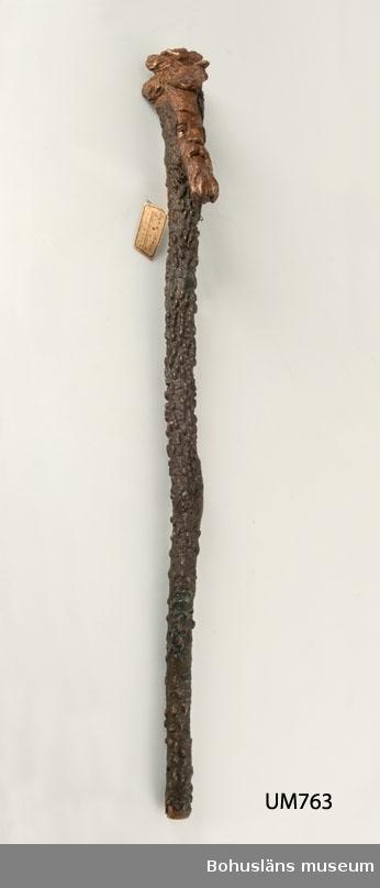 Spatserkäpp gjord av en gren från en buske/ett mindre träd som växer i sydöstra USA. Vetenskapligt namn: Zanthoxylum clava-herculis.  Också kallad the Hercules' Club eller Hercules-club, pepperwood eller Southern prickly ash.  Ur handskrivna katalogen 1957-1958: Käpp av pepparträ, Amerika L. 82,5 Med utskurna ornament bl.a ett ansikte. Något skadad. New York, USA.  Lappkatalog: 8  Oscar Hedberg, Göteborg, var f.d. Uddevallabo, se UM001069.