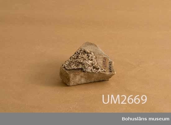 Ur handskrivna katalogen 1957-1958: Kalkstensfragment (3) fr. Alexandria. se. UM536 (samma)  Lappkatalog:  Ur handskrivna katalogen 1957-1958: 3 bitar ådrig kalksten = 536 Tre bitar av delvis polerad sten. Alexandria  Lappkatalog: 100  Strl: (1) 13 x 6,5 x 2,2 cm + (2) 7,5 x 6,8 x 2 cm + (3) 10 x 7,5 x 2,5 cm.