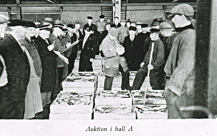"""Text på skioptikonplåten: """"Auktion i hall A."""""""