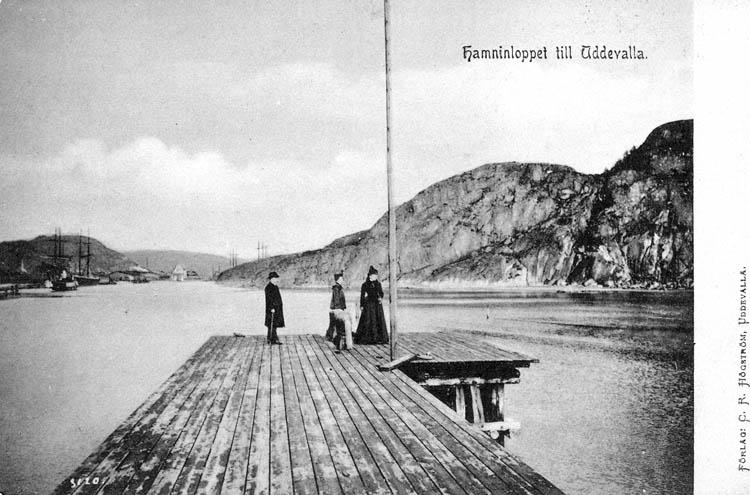 Hamninloppet till Uddevalla. C. R. Högström Uddevalla.