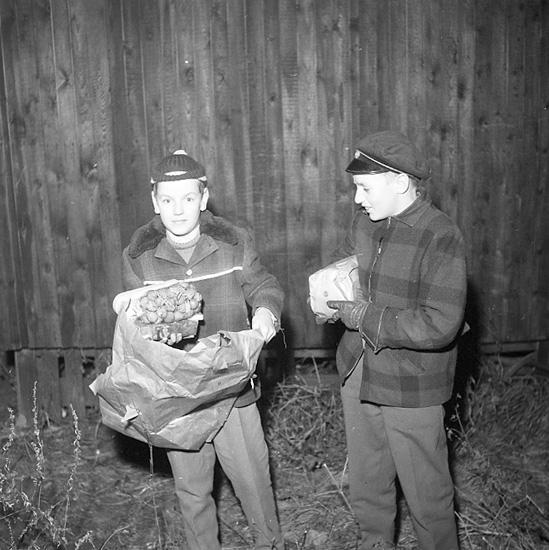 """Enligt notering: """"11 Limpor cigaretter hittade i cementröd vid Eol-bolaget 19-11-56""""."""