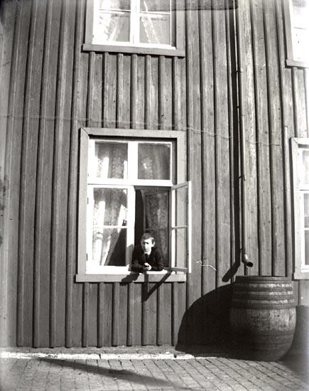 Carl-Gustaf i fönstret.
