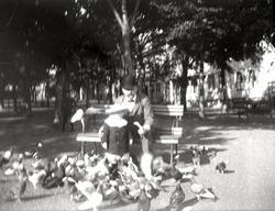 Evald och Kurt Widell i Paradisparken 1908