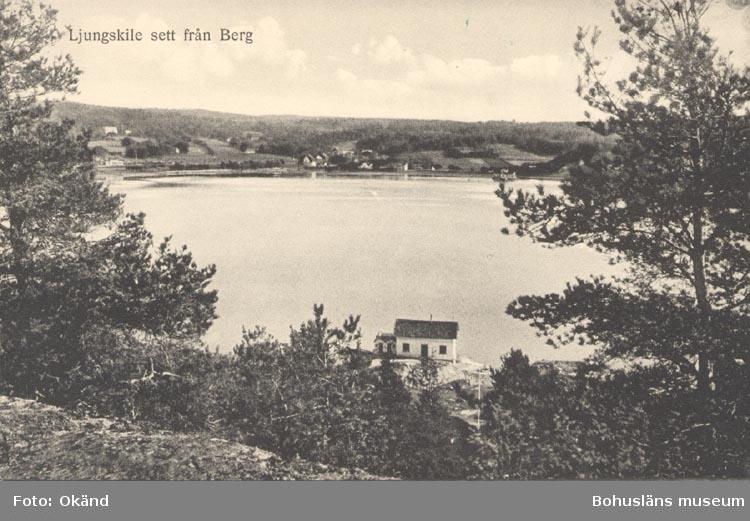 """Tryckt text på kortet: """"Ljungskile sett från Berg"""". """"Förlag: M. Johanssons Bokhandel, Ljungskile""""."""