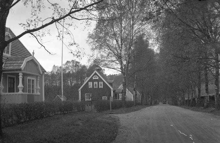 "Enligt fotografens noteringar: ""Tången Munkedal."""