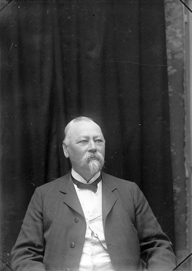 """Enligt fotografens journal Lyckorna 1909-1918: """"Kock, Direktör Ljungskile""""."""