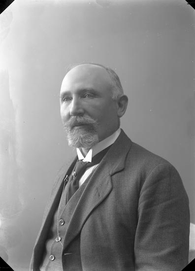 "Enligt fotografens journal nr 2 1909-1915: Wetterqvist, Doktor Ön""."