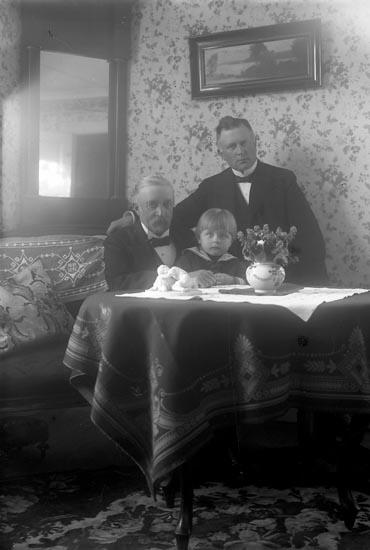 "Enligt fotografens journal nr 4 1918-1922: ""Rehnberg, Kyrkoherde John Näsinge 3 generationer""."