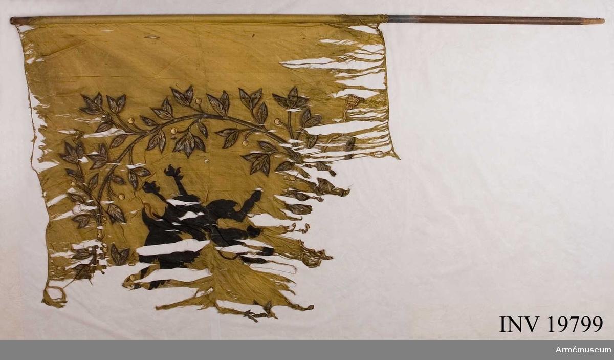 Stången visar spår av bemålning i blått med Ö:R:C: i gult precis nedanför fanduken. Ca 14 cm brett fält. Fållarna har insydd förstärkning av blå flätad snodd av silke. Fanan sitter mot stången med tännlikor och mönstervävt band i gult. 100 st tännlikor.