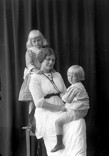 "Enligt fotografens journal nr 2 1909-1915: ""Steen, Arkitekt (Fru m. barn) Ön""."