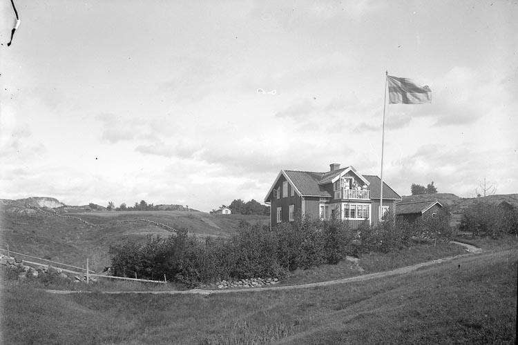 """Enligt fotograrens journal nr 3 1916-1917: """"Sjögren, Villa Här""""."""