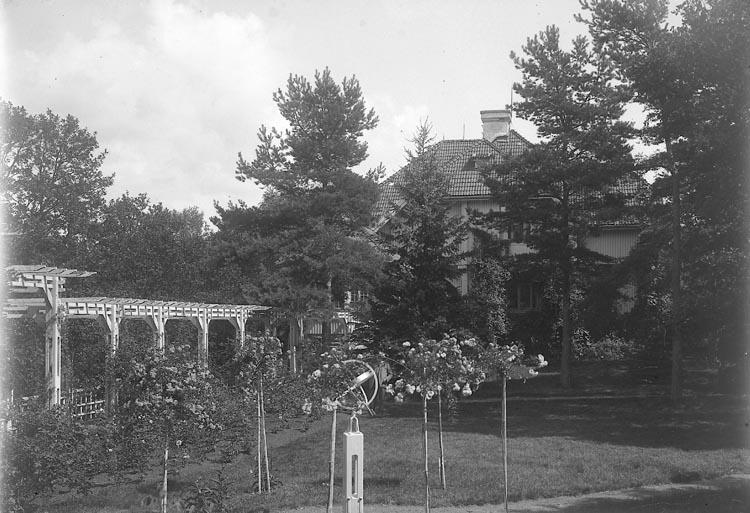 """Enligt fotografens journal nr 5 1923-1929: """"Kullgren, Stadsmäklare Stenungsön"""". Enligt fotografens notering: """"Stadsmäklare W. Kullgren villaträdgård""""."""