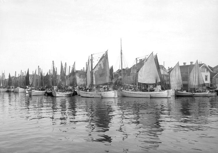 Juni 1924 Ort: Smögen, Bohuslän Objektiv: Meijer Väder: Sol