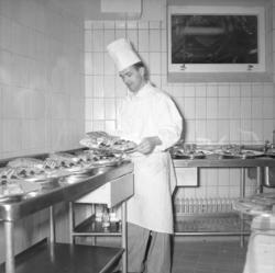 """""""Lysekil. Från invigningen av Hotellet. 1952.05.28"""""""