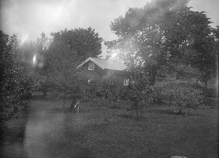 """Enligt senare noteringar: """"Änga i Forshälla (boningshuset och trädgården), 9/7 1916."""""""