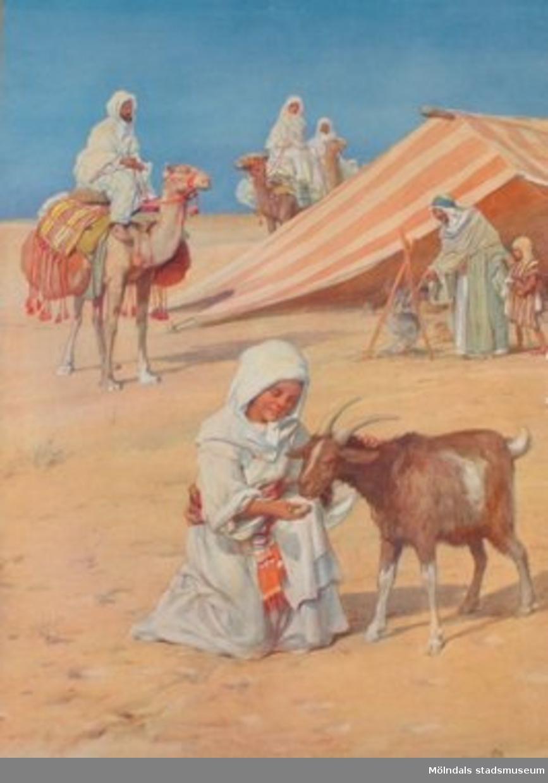 Nelson: Folklivsbilder.             Arabiskt läger i öknen.