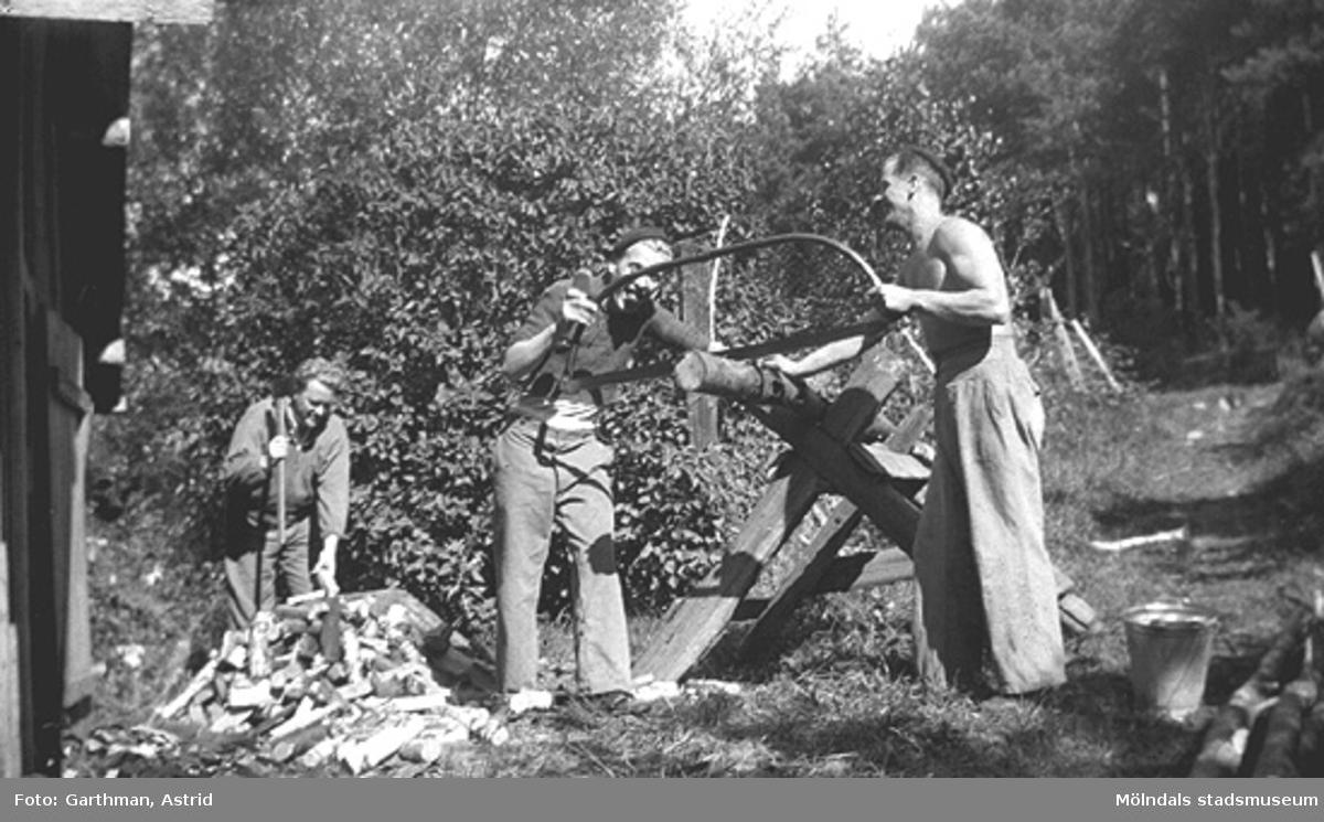 Gustav Andersson, Charlie Jinnerstedt och Helmer Garthman sågar ved vid en sågbock i Fjärås. 1930-tal.