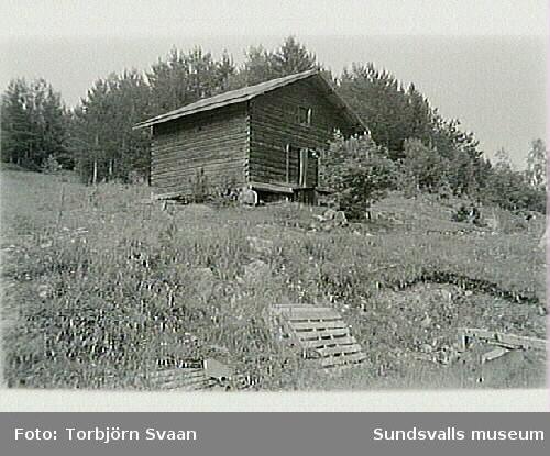 SuM-foto016522
