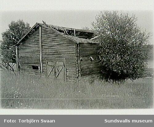 SuM-foto016524