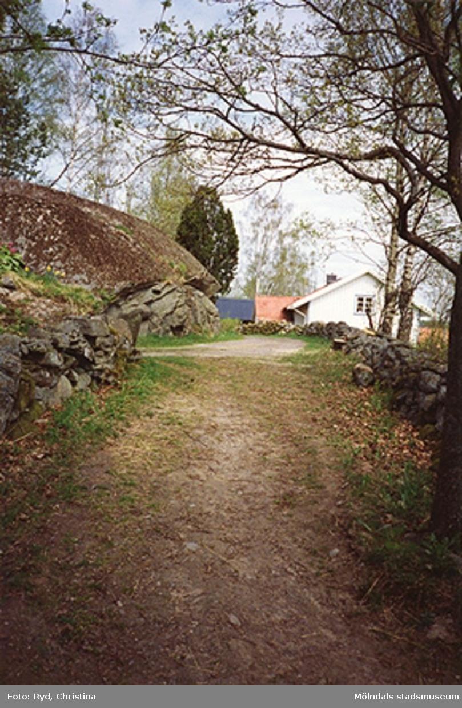 Fägata söder om Börjesgården-Ekekullen i Hällesåker, maj 1994.