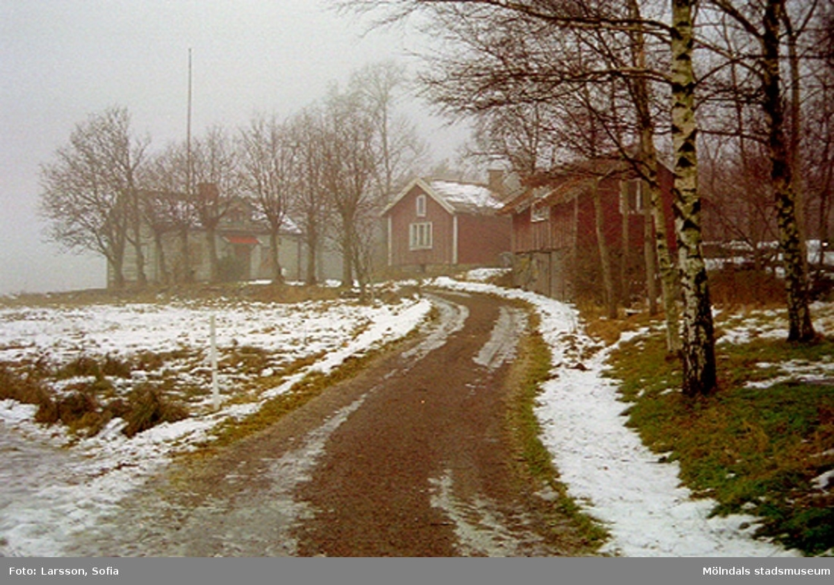 Gårdsmiljö vid Elof Lindälvs väg 77, Fagered 2:36, Lindome. 2002-01-07.