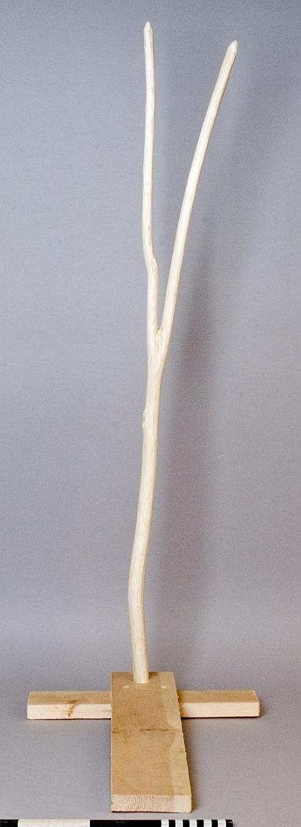 Nättjuga, tillverkad av en självväxt ung trädstam, som fästs i ett T-format fotstöd. Nättjugan används som mothåll vid tillverkning och lagning av nät samt förvaring av nät under tillverkning.