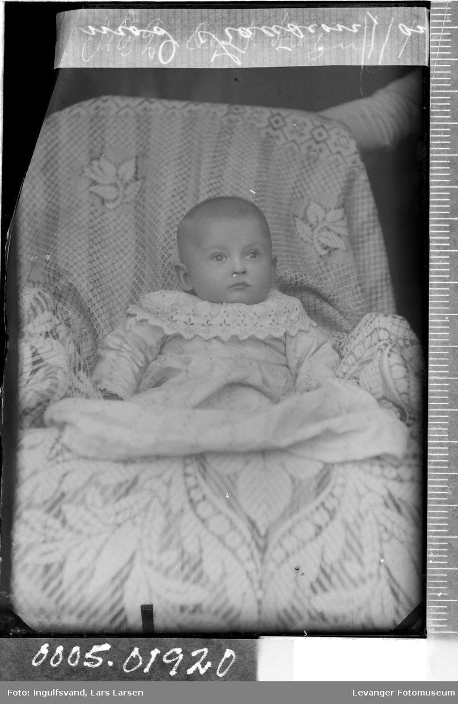 Portrett av et spedbarn.